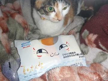 三毛猫蒸しパン.jpg